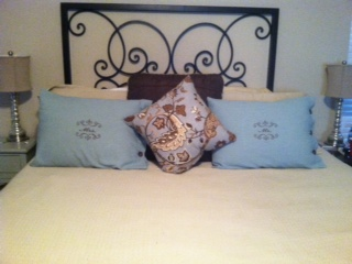 Terri's Sewing 101 Pillow Shams